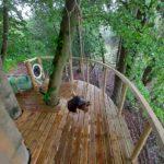 Treetop Accommodation