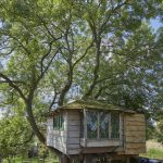 wooden treehouse cabin