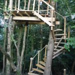 ascending view of wooden treehouse staircase