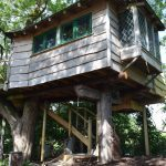ground view of wooden treehouse cabin