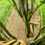 birdseye view of wooden treehouse platform