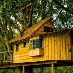 photo of wooden treehouse cabin