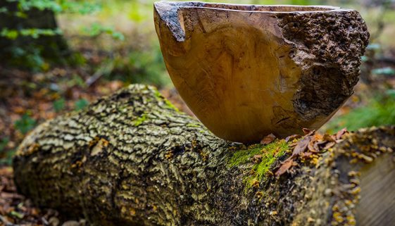 Handcrafted Bowl in forest