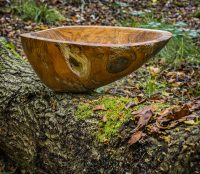 Hand crafted bowl in forest