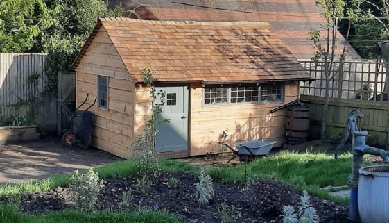 wooden clad treehouse